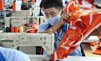 Die vietnamesischen Gewerkschaften treten für grüne Arbeitsplätze ein