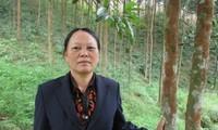 Eine fleißige Frau der Minderheitsvolksgruppe Dao in der Provinz Yen Bai