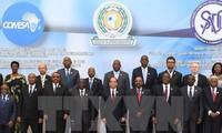 25 afrikanische Länder vereinbaren gemeinsame Freihandelszone