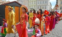 Chancen zur Zusammenarbeit zwischen Vietnam und Provinzen Tschechiens