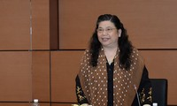 Vize-Parlamentspräsidentin Tong Thi Phong trifft dänische Abgeordnete