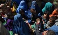 Flüchtlingsfrage: Mehr als 350.000 afghanische Flüchtlinge in Heimat zurückgekehrt