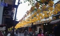 Hanoi feiert Tag des vietnamesischen Kulturerbes