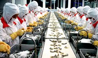 Förderung der Exportunternehmen zur nachhaltigen Entwicklung