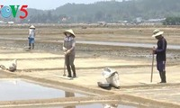 Das Salzdorf Sa Huynh in der Provinz Quang Ngai