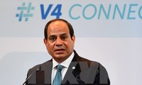 Ägypten bekräftigt erneut seine Unterstützung für Staat Palästina