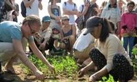Grüntourismus in Hoi An interessiert Besucher