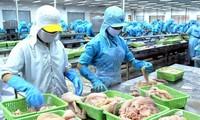 Veröffentlichung des Weißbuchs zum Kampf gegen illegale Fischerei in Vietnam