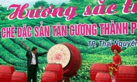 Teefest Tan Cuong