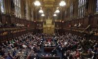 Brexit-Frage: Britisches Oberhaus stimmt für Vetorecht des Parlaments
