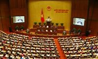Die 5. Parlamentssitzung gewissenhaft und effizient veranstaltet