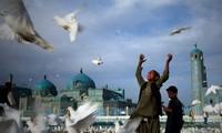 Afghanistan-Konferenz verschoben