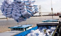 Verbesserung der Konkurrenzfähigkeit des vietnamesischen Reises