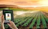 Förderung der Anwendung der Wissenschaft und Technologien in der Landwirtschaftsproduktion