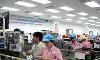 越南工贸部要求稳定2017年春节市场