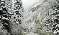 越南沙坝番西邦峰下雪