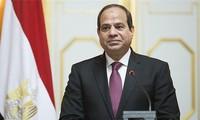 """越南是埃及""""东向""""政策中的优先之一"""