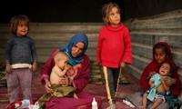 联合国继续就叙利亚人道主义危机发出警告