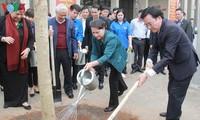 越南国会办公厅接收和种植羊蹄甲