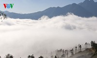 Highland Sapa in the clouds