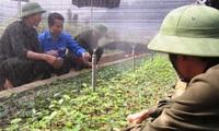 Vietnam will mehr Arbeitsplätze für Jugendliche auf dem Land schaffen