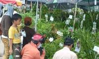 Eröffnung der Landwirtschaftsmesse in Soc Trang