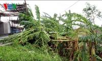 Vietnam und den Philippinen zur Beseitigung der Taifunfolgen helfen