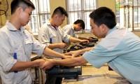Vietnam bereitet sich auf den ASEAN-Berufswettbewerb vor