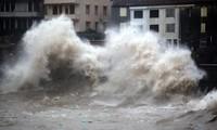 Taifun Chan-hom: China evakuiert 865.000 Personen