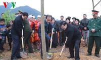 Staatspräsident Truong Tan Sang startet Pflanzenfest 2016