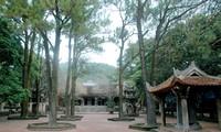 Pagode Con Son in Hai Duong
