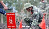 20 Millionen US-Dollar für Minenräumung in Quang Tri