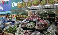 Platz für vietnamesisches Obst auf internationalem Markt schaffen