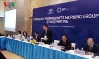 Vietnam gibt viele Ideen und Vorschläge auf Sitzungen der Arbeitsgruppen von APEC