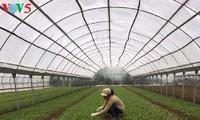 Unternehmerin Hang und ihr Wunsch, Verbrauchern saubere Nahrungsmittel anzubieten