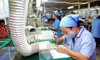 Vietnam behält Exportüberschuss nach Kanada bei