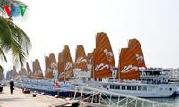 Vier ausländische Kreuzfahrtschiffe bringen 6200 Touristen nach Halong