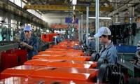 Unternehmen begleiten Regierung und Ho Chi Minh Stadt