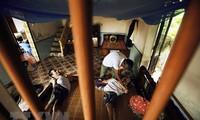 Urteil des Falls Monsanto weckt Hoffnung für Agent-Orange-Klage Vietnams