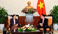 Vizepremier, Außenminister Pham Binh Minh trifft Laos' Vizeaußenministerin