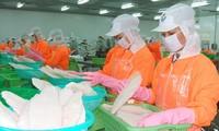 Ziel von 2,4 Milliarden US-Dollar für Export von Pangasius