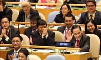 Vietnam ist zum nichtständigen Mitglied des UN-Sicherheitsrats mit 192 von 193 Stimmen gewählt