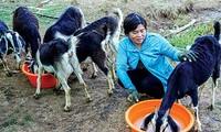 Jugendliche Vorbilder beim Aufbau landwirtschaftlicher Modelle zur Anpassung an den Klimawandel