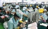 Memulai proyek memperbaiki kuantitas dan kualitas lapangan kerja untuk pekerja