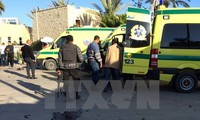 Mesir membasmi kira-kira 30 pembangkang di Sinai Utara