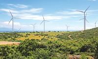 Mengembangkan sumber energi terbarukan di Vietnam