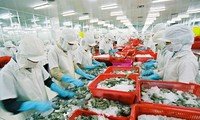 Titik-titik cerah dalam ekspor Vietnam tahun 2017