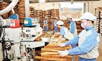 Ekspor kayu dan produk dari kayu Vietnam pada tahun 2018