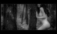 Memandangi karya-karya dalam pameran foto telanjang pertama yang mendapat surat izin di Viet Nam