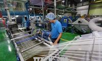 Menyerap modal FDI di Provinsi Dong Nai: Daya tarik dari faktor brand
